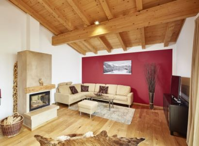 Luxury Kamin (fireplace) Apartment